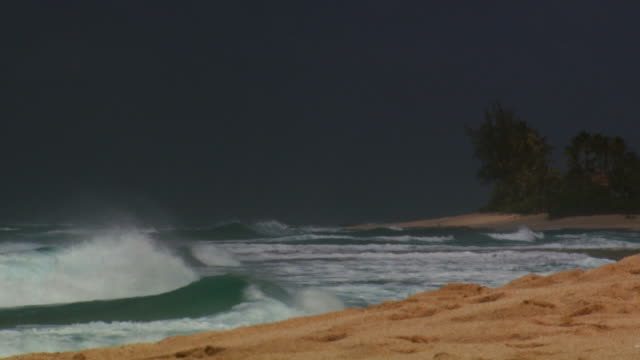 waves on sandy beach - turtle bay hawaii stock videos & royalty-free footage