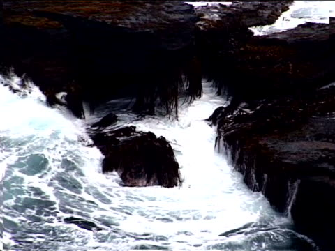 waves on seaweed-covered rocks - artbeats stock videos & royalty-free footage