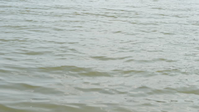 waves on the water surface in the lake - water surface level stock videos & royalty-free footage