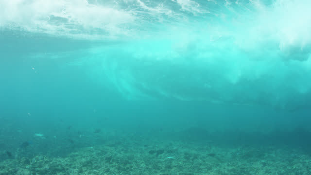 waves roll and crash above fish, shot from underwater - coral stock videos & royalty-free footage