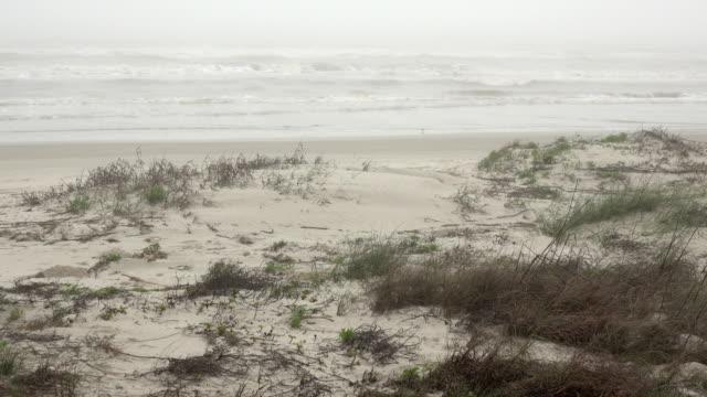 vídeos y material grabado en eventos de stock de olas en las praderas de la playa de la niebla padre island national seashore gulf coast texas - gulf coast states