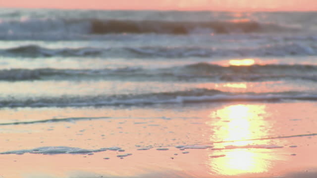 ms waves roll on the beach at sun set time / st. peter-ording, schleswig holstein, germany   - schleswig holstein stock-videos und b-roll-filmmaterial