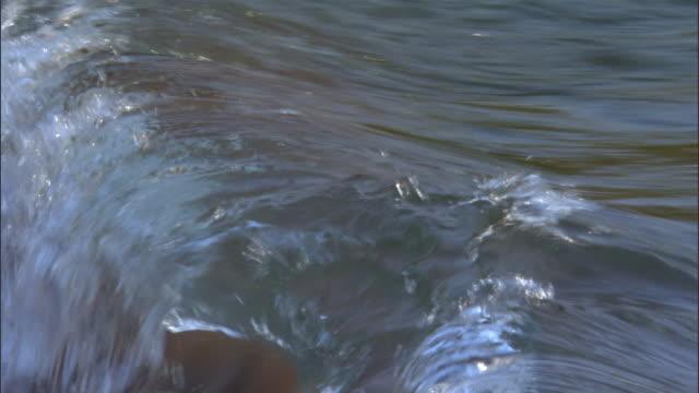 Waves roll onto shore of Lake Tanganyika, Tanzania