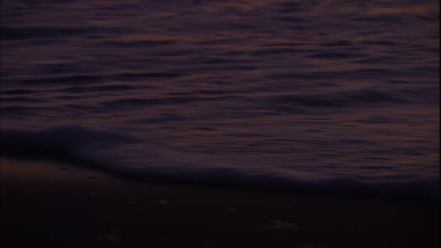 waves roll onto the beach and leave bubbles behind on the sand. - soap sud stock videos & royalty-free footage