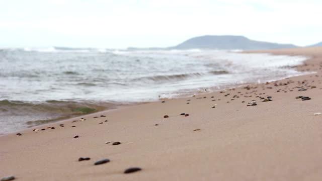 vídeos y material grabado en eventos de stock de olas en la playa de guijarros - pipeline wave