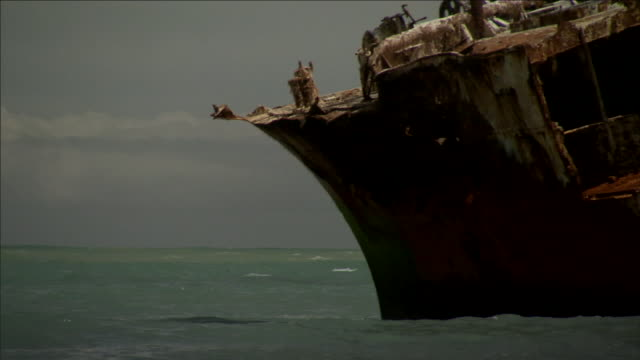 waves wash around a rusty shipwreck. - shipwreck stock videos & royalty-free footage