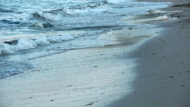 Waves wash onto a sandy beach.