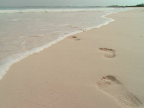 ws,  waves washing over footprints in sand,  harbour island,  bahamas - placca di montaggio fissa video stock e b–roll