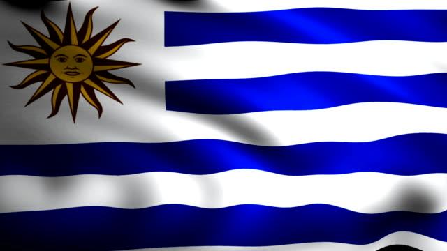 waving flag of uruguaian animation - uruguaian flag stock videos & royalty-free footage