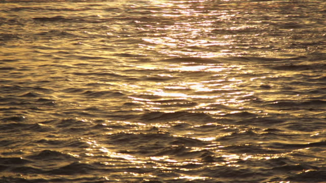 waving sea at sunrise - mgost stock videos and b-roll footage