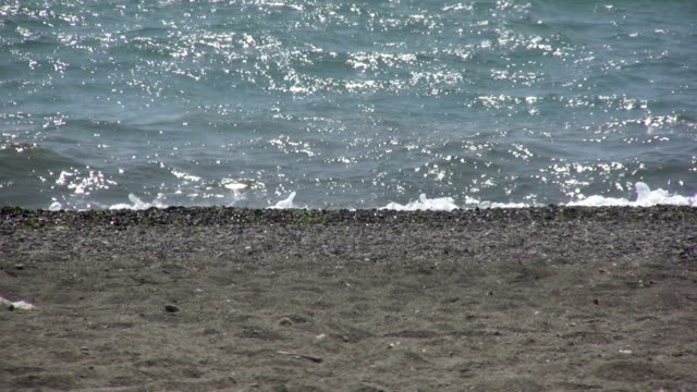 wavy edge of seashore - squiggle stock videos and b-roll footage