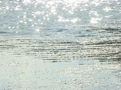 vídeos de stock, filmes e b-roll de lago ondulado - linha ondulada