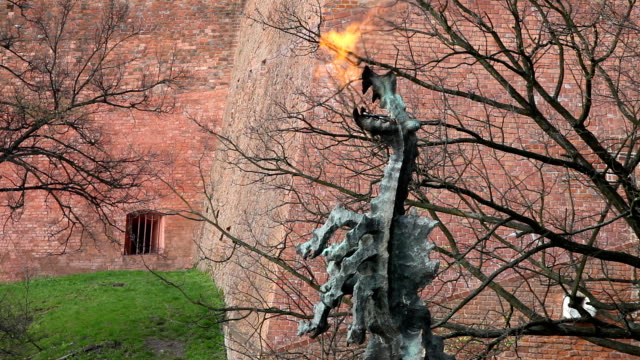 wawel dragon - dragon stock videos & royalty-free footage