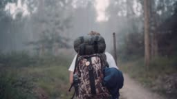 Way of Saint James pilgrim backpacker female going by the path through Eucalyptus forest  back view slow motion footage.