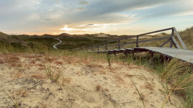 way through the dunes - schleswig holstein stock videos & royalty-free footage