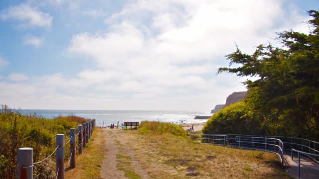 way to beach. palm tree. sea - long beach california stock videos & royalty-free footage