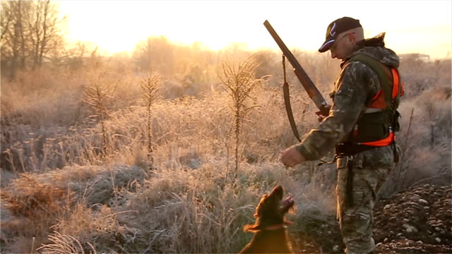 we are companions in the hunt - hunting sport stock videos & royalty-free footage