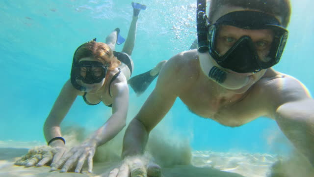 ms wearable camera point of view couple snorkeling underwater in sunny turquoise blue ocean - underwater camera stock videos & royalty-free footage