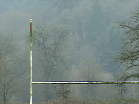 weathered goal post with bare tree branches in bg football practice field goals - football goal post stock videos and b-roll footage