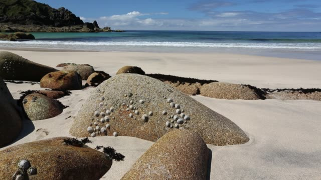 weathered granite boulders on the beach at porthmeor cove, on cornwall's north coast, uk. - boulder rock stock videos & royalty-free footage