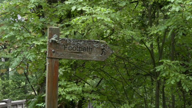 Weathered wooden footpath sign in Scottish woodland