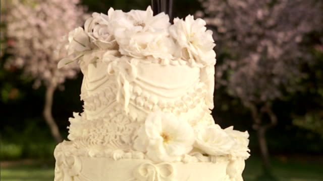 cu, tu, wedding cake with two groom figurines on top - icing stock videos and b-roll footage