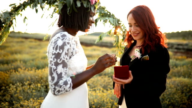 lgbtqi wedding ceremony - wedding dress stock videos & royalty-free footage