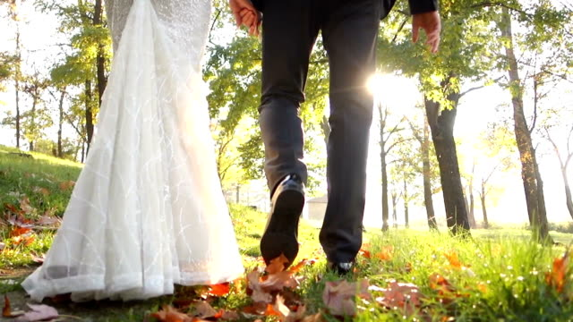 wedding couple in autumn walk - bride stock videos and b-roll footage