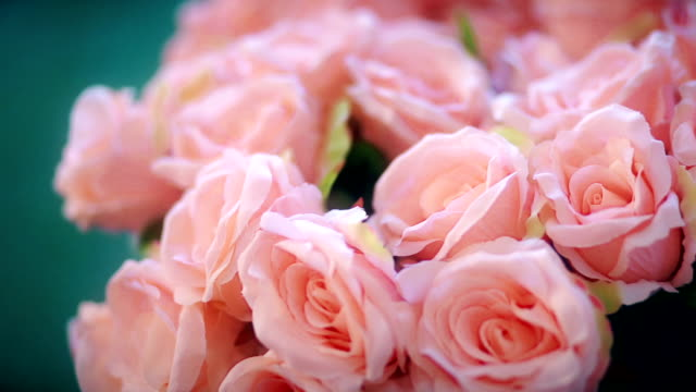 wedding decoration with pink roses on the table. - bouquet video stock e b–roll