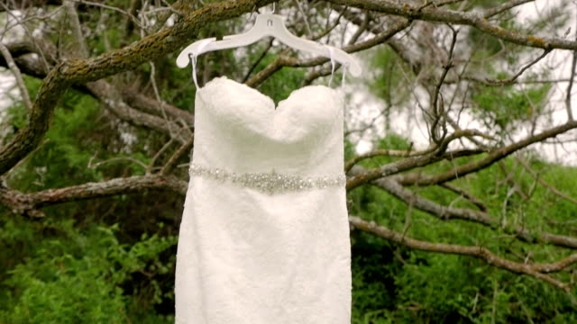 wedding dress hanging from tree with tilt down - wedding dress stock videos and b-roll footage
