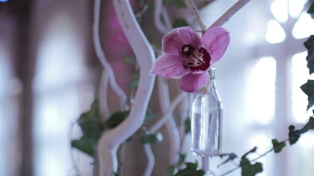 hochzeit blumen dekoration - vase stock-videos und b-roll-filmmaterial