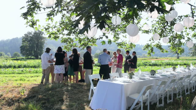 r/f ws wedding party having appetizers and drinks beside banquet table in field under tree/washington, usa - wedding stock videos & royalty-free footage