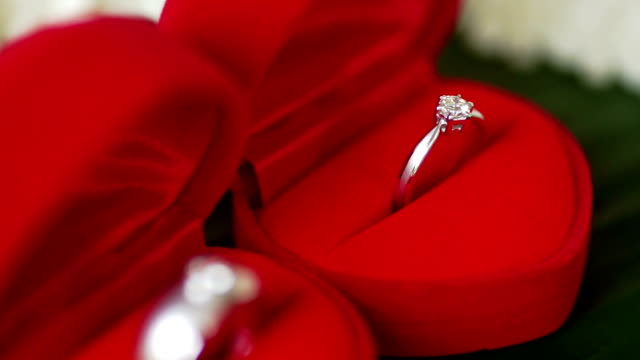 wedding rings for the bride and groom. - engagement ring stock videos and b-roll footage