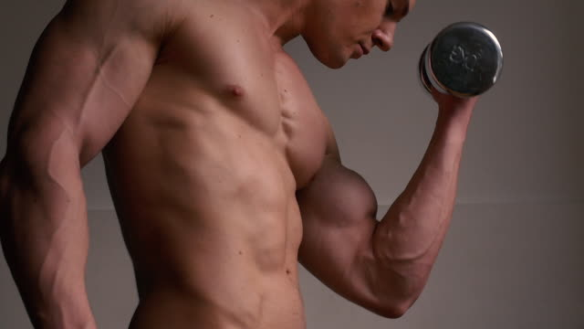 vídeos de stock e filmes b-roll de weight training - body building
