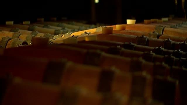 weinfässer 2 - wine cask stock videos and b-roll footage