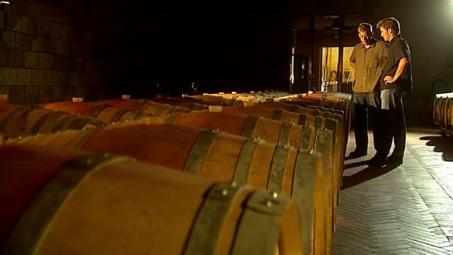 weinkeller - wine cask stock videos and b-roll footage
