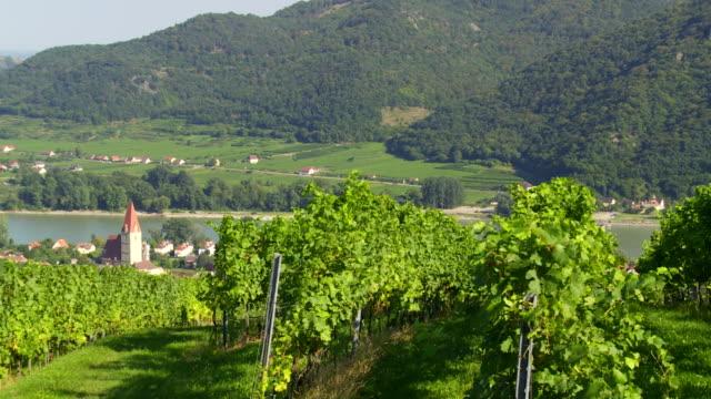 weissenkirchen in danube valley (österreich)-pan - donau stock-videos und b-roll-filmmaterial