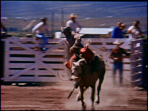 welcome to the rodeo! a place where cowboys try to ride animals that hate things sitting on their spines. through quick cuts, we see the opening of... - recreational horse riding stock videos & royalty-free footage