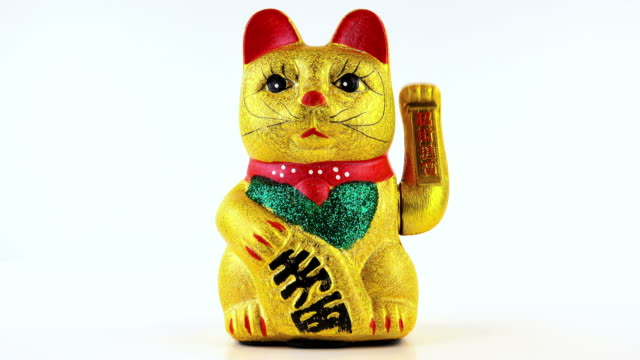 welcoming cat - chinese culture stock videos & royalty-free footage