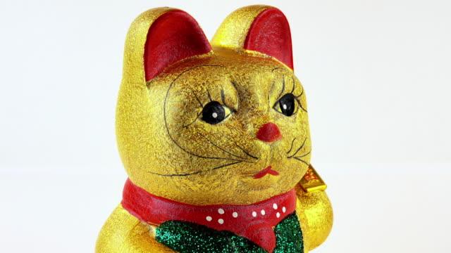 einladende cat - heranlocken stock-videos und b-roll-filmmaterial