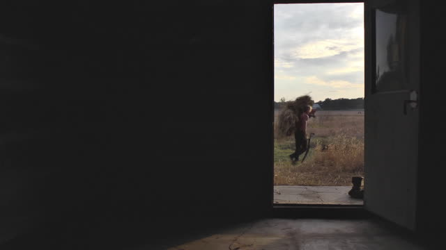well-built old-time farm hand stands in the doorway of a log cabin with a load of hay on his shoulder and watches the sun set. - doorway stock videos & royalty-free footage