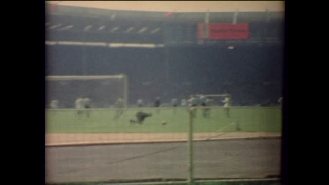 wembley stadium crowd waving union jacks england and argentina players taking the field for england number 1 gordon banks 2 george cohen 3 ray wilson... - 1966 stock-videos und b-roll-filmmaterial