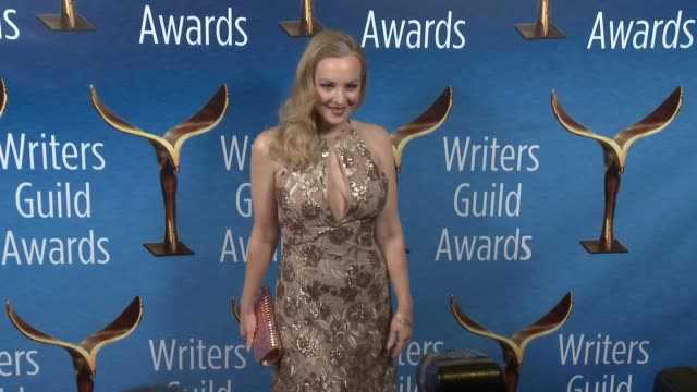 vídeos de stock, filmes e b-roll de wendi mclendoncovey at 2017 writers guild awards in los angeles ca - wendi mclendon covey
