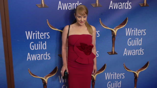 wendi mclendon-covey at the 2020 writers guild awards at the beverly hilton hotel on february 01, 2020 in beverly hills, california. - the beverly hilton hotel stock videos & royalty-free footage