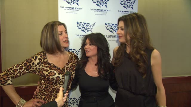 wendie malick, valerie bertinelli,jane leeves on the award they presented, the horrors of bull fighting, valerie's two cats at the the 25th... - wendie malick stock videos & royalty-free footage