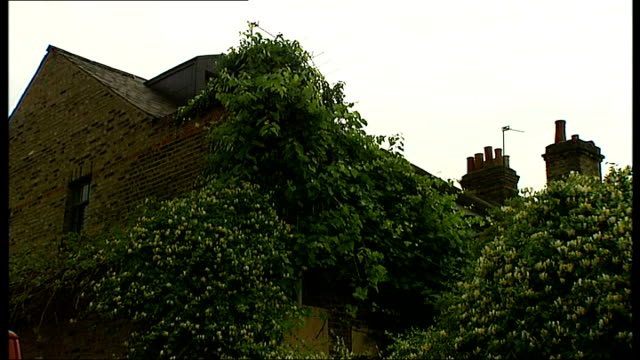 west london brentford ext general views of end of terrace house owned by mps ann keen and alan keen low angle shot of vegetation growing over back of... - dacherker stock-videos und b-roll-filmmaterial