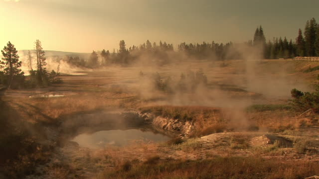 stockvideo's en b-roll-footage met ms, west thumb geyser basin, yellowstone national park, wyoming, usa - sepiakleurig