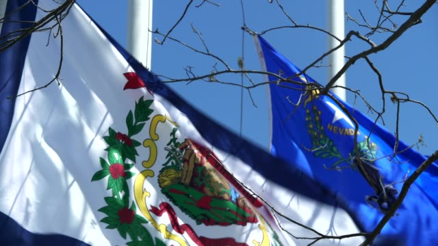 west virginia state flag waving in the breeze - west virginia us state stock videos & royalty-free footage