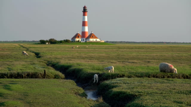 westerhever lighthouse at sunset - schleswig holstein stock videos & royalty-free footage