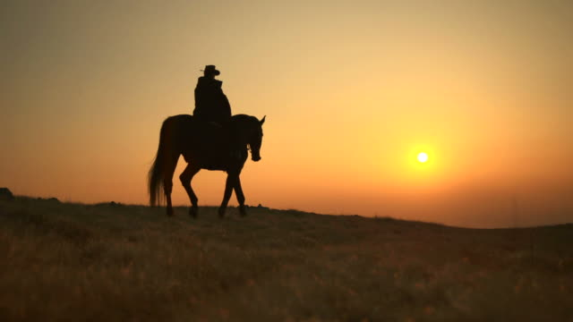 hd: western horseback riding at sunset - cowboy stock videos & royalty-free footage